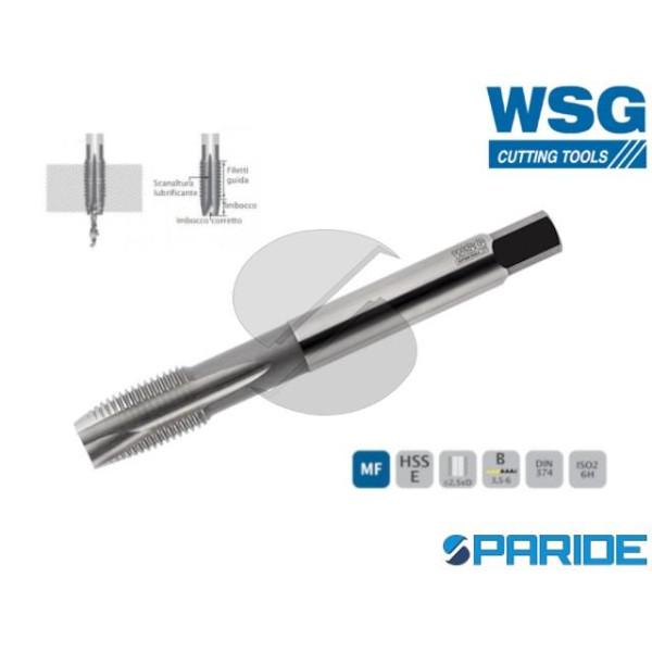 MASCHIO A MACCHINA 6024 M12 P1,75 WSG DIN13 PASSAN...
