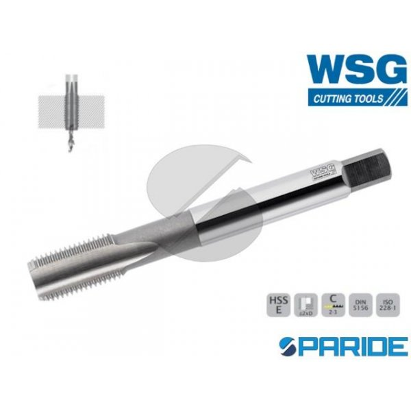 MASCHIO A MACCHINA 6131 G 3\4 GAS WSG HSS-E PER FO...