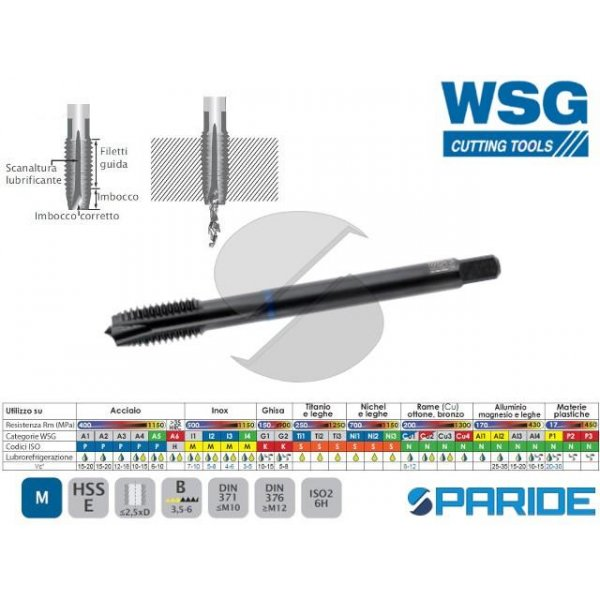 MASCHIO A MACCHINA INOX 3006 M6 P 1,0 WSG DIN13 FO...