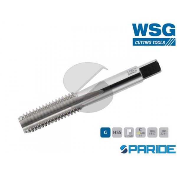 MASCHIO A MANO 6209 G 1\4 GAS HSS FINITORE WSG